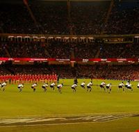 84249  millennium stadium