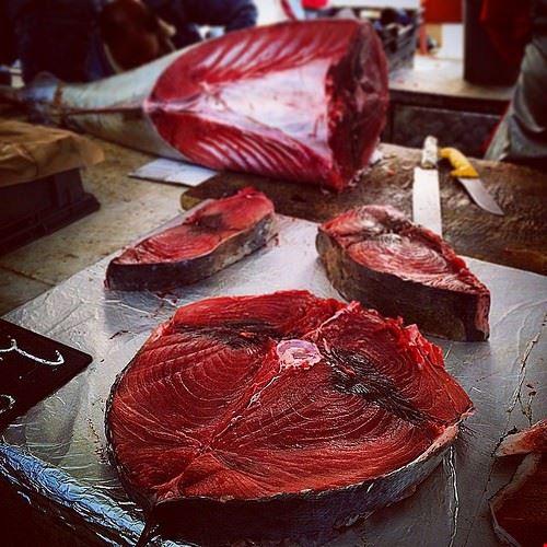 84546  fish market