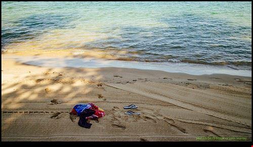 84550  manly beach