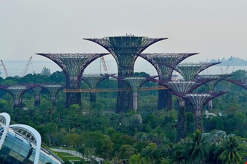 84657  gardens by the bay