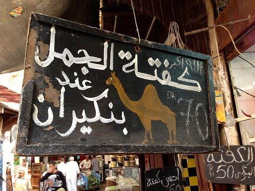 mercato dei cammelli di birqash