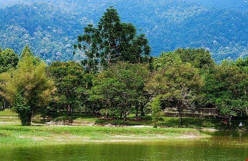 85137  lake gardens