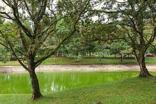 85138  lake gardens