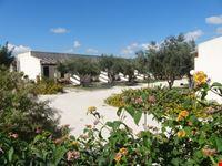 village marsala
