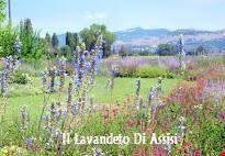 Assisi Giardini da visitare