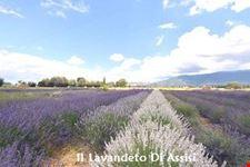 Assisi Itinerario turistico