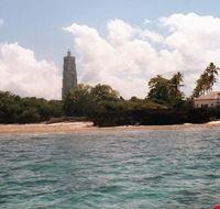 85637  isola di chumbe