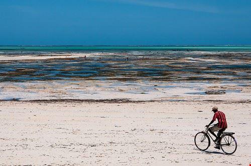 85651  spiaggia di jambiani