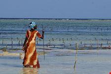 spiaggia di matemwe
