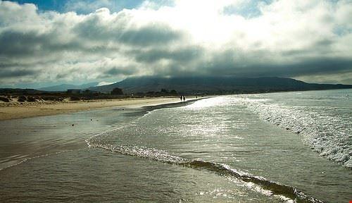 85681  playa bolonia