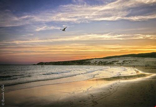 85685  playa de valdevaqueros