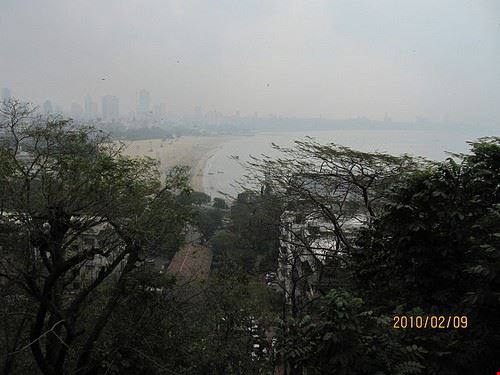85782  parco kamla nehru