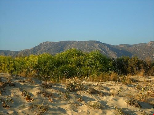 86209  spiaggia di elafonissi