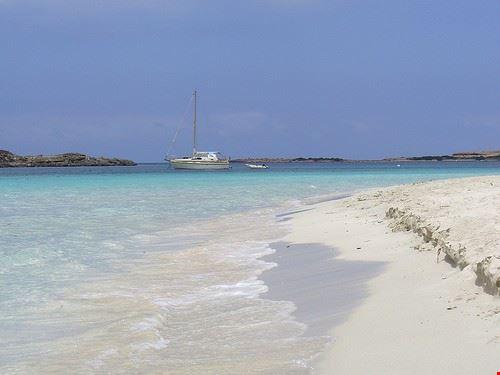 s alga beach