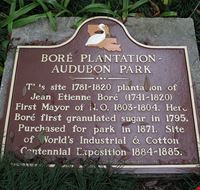 86676  audubon zoo