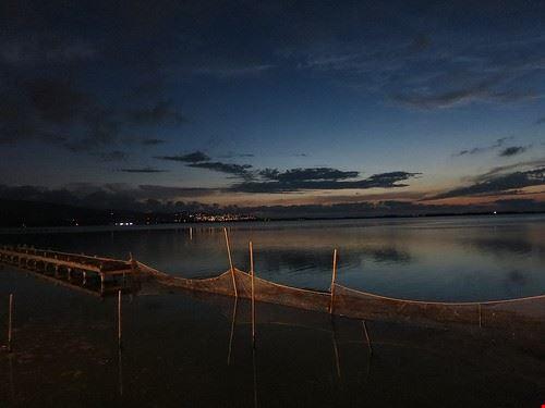 riserva naturale laguna di orbetello