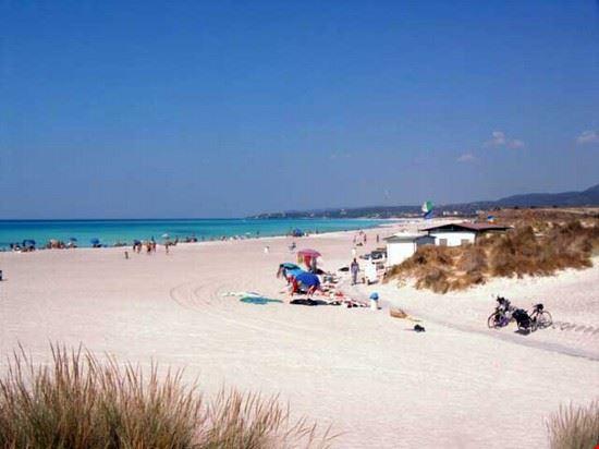 87561 cecina spiaggia cecina