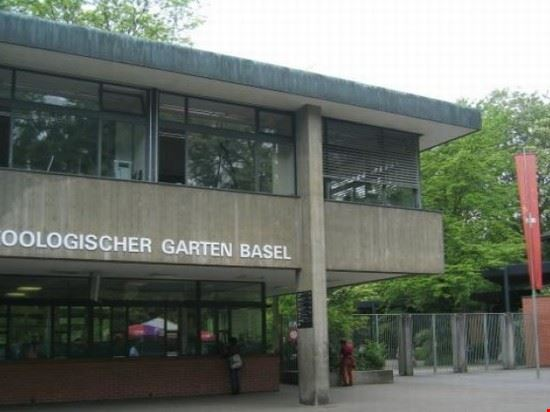 basilea zoo basel