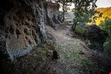 Parco_orsini
