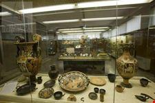 museo archeologico altamura