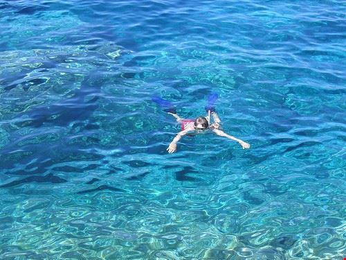 snorkeling e immersioni