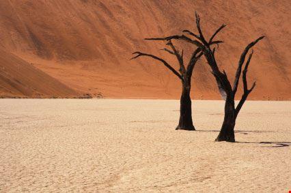 windhoek deserto a windhoek