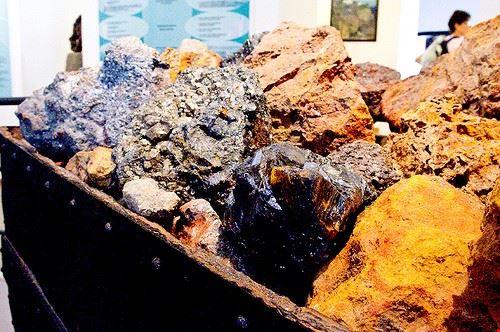 89642  museo minerali elbani collezione a ricci