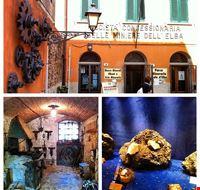89644  museo minerali elbani collezione a ricci