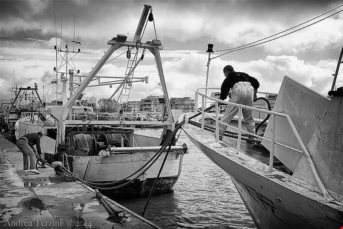 porto di fiumicino