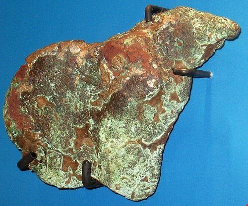 90427  museo geologico cortesi