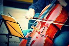 violoncello viennese vienna
