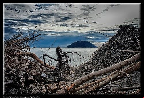 spiaggia dell ancona di bellocchio