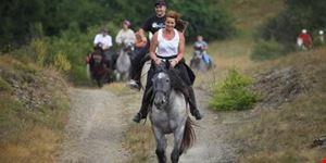roma equestrianitalycom