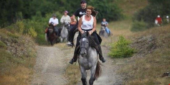 91387 roma equestrianitalycom