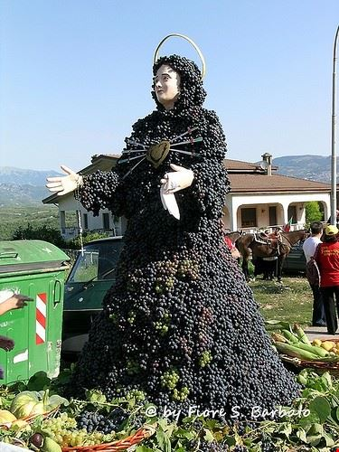 dall olio di pontelandolfo ai vini di solopaca