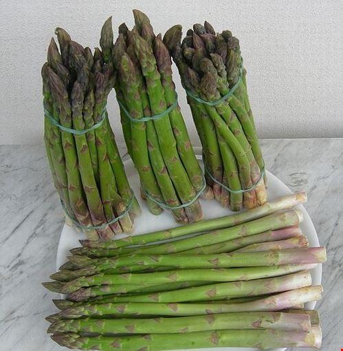91604 cavallino-treporti asparago verde