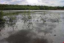 oasi naturalistica le fonti del vascello