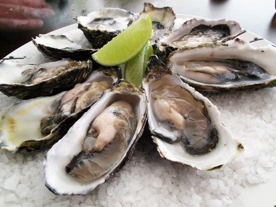 93090 kilkenny oysters
