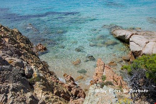 l arcipelago della maddalena