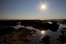 Punta Prosciutto