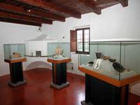 museo archeologico sepino