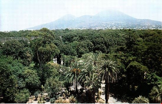 95591 portici orto botanico