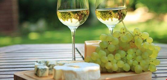 strada del vino asolo