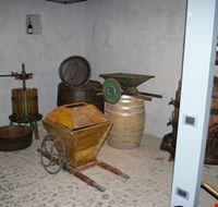 museo diffuso del vino monte porzio catone