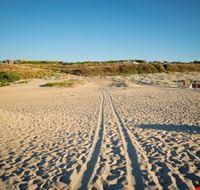 valledoria spiaggia