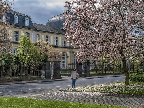 castello di poppelsdorf