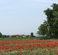 Cazzago San Martino
