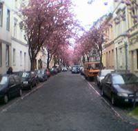 97162 bonn heerstrasse