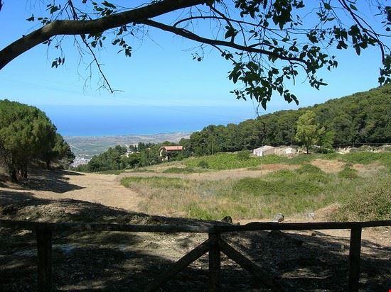 Riserva Naturale Bosco di Alcamo