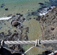 97391 carrick-a-rede ponte